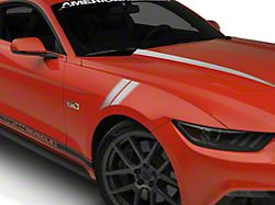 American Muscle Graphics Silver Pinstriped Hash Marks (15-19 All)