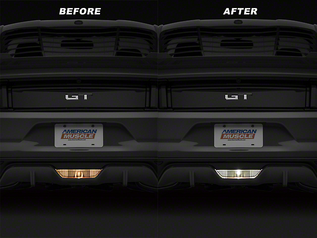 Vividline Reverse Light LED Conversion Kit (15-20 All)