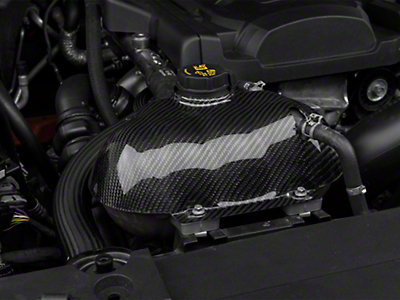 Trufiber Carbon Fiber Coolant Reservoir Cover (15-17 All)