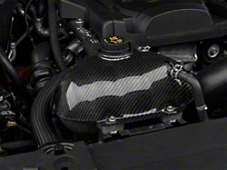 Trufiber Carbon Fiber Coolant Reservoir Cover (15-19 All)