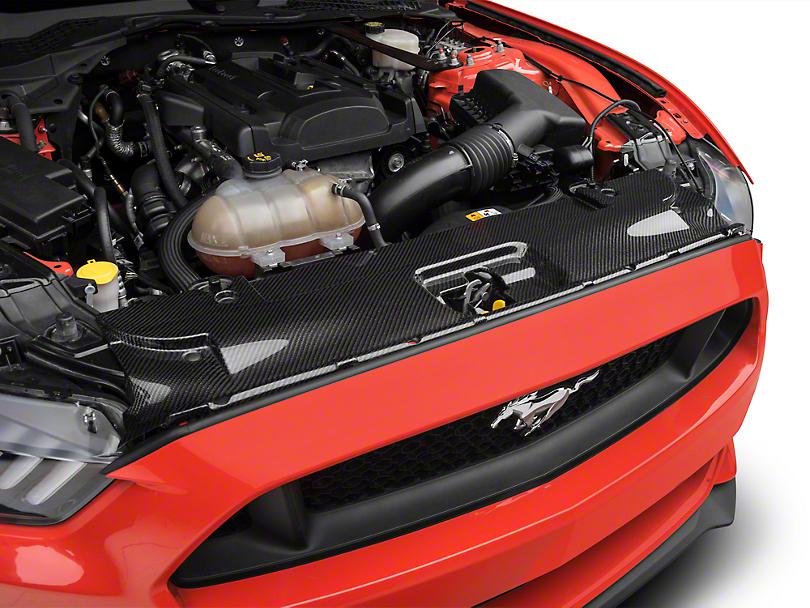 Trufiber Carbon Fiber Radiator Cover (15-17 GT, EcoBoost, V6)