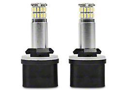 Axial Fog Light LED Bulbs (94-04 All, Excluding 03-04 Cobra)
