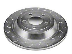 J Hook Slotted Rotors - Rear Pair (15-19 EcoBoost, V6)