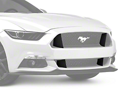 Win 5 000 For Your Mustang