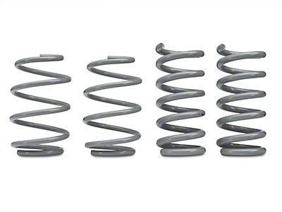 RTR Tactical Performance Lowering Springs (15-19 GT Fastback, EcoBoost w/o MagneRide)