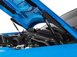 Ford Performance Hood Strut Kit w/ Ford Performance Logo (05-09 All)