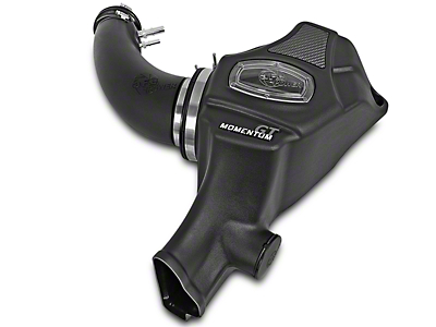 AFE Momentum GT Pro DRY S Cold Air Intake (15-17 V6)