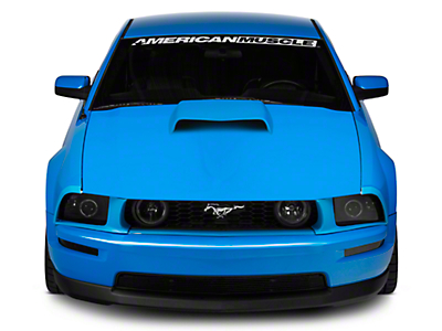 Cervini's B9 Hood Kit - Unpainted (05-09 GT)