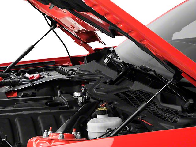 Roush Hood Strut Kit (15-18 GT, EcoBoost, V6)