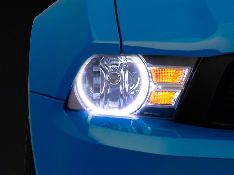 Oracle Black OE Style Headlights w/ White Plasma Halos (10-12 GT, V6)