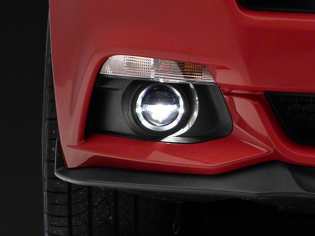 Morimoto XB Projector LED Fog Lights (15-17 GT, EcoBoost)