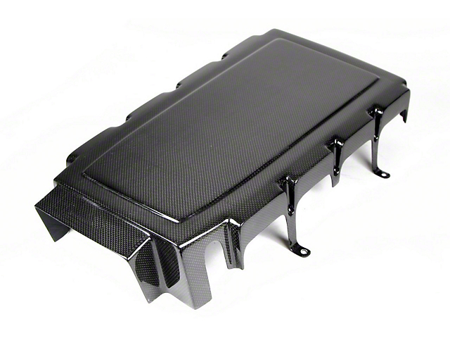 APR Performance Engine Plenum Cover; Carbon Fiber (05-10 GT)
