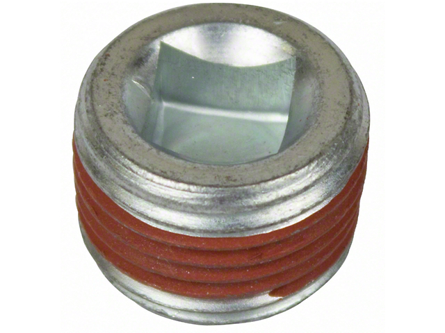 Ford Differential Fill Plug (79-14 All)