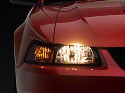 OE Style Headlights; Black Housing; Clear Lens (99-04 All)