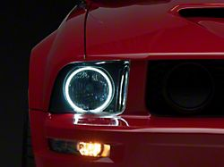 Axial Smoked Headlights - CCFL Halo (05-09 GT, V6)