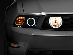 Raxiom Halo Fog Lights; Smoked (05-12 GT)