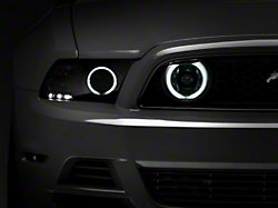 Raxiom CCFL Halo Fog Lights; Chrome (13-14 GT)