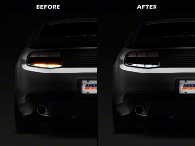 Reverse Light LED Conversion Kit (10-12 All)