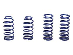 SR Performance Lowering Springs; Sport (79-04 Coupe, Excluding 99-04 Cobra)