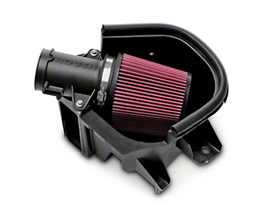 Roush Cold Air Intake (10-14 GT; 12-13 BOSS 302)