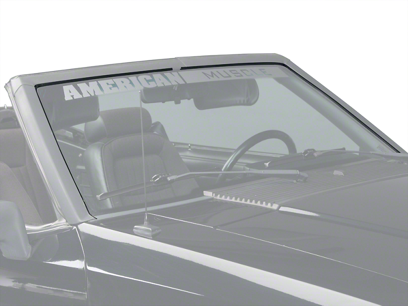 OPR Windshield Seal Weatherstripping Kit (89-93 Convertible)