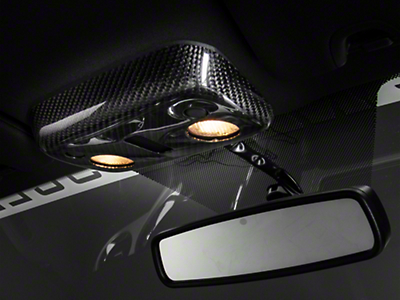 SpeedForm Carbon Fiber Map Light Cover (13-14 Convertible)