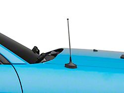 SpeedForm Fixed Black Antenna; 8 Inch (79-09 All)