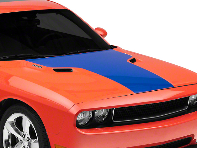 American Muscle Graphics Hood Decal - Blue (08-14 All)