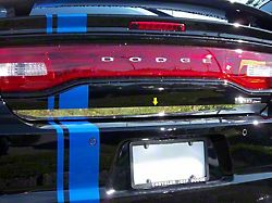 Rear Deck Trim; Trunk Lid Accent (11-21 All)