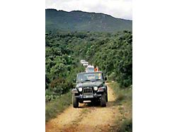 Jeeps on the Trail Refrigerator Magnet