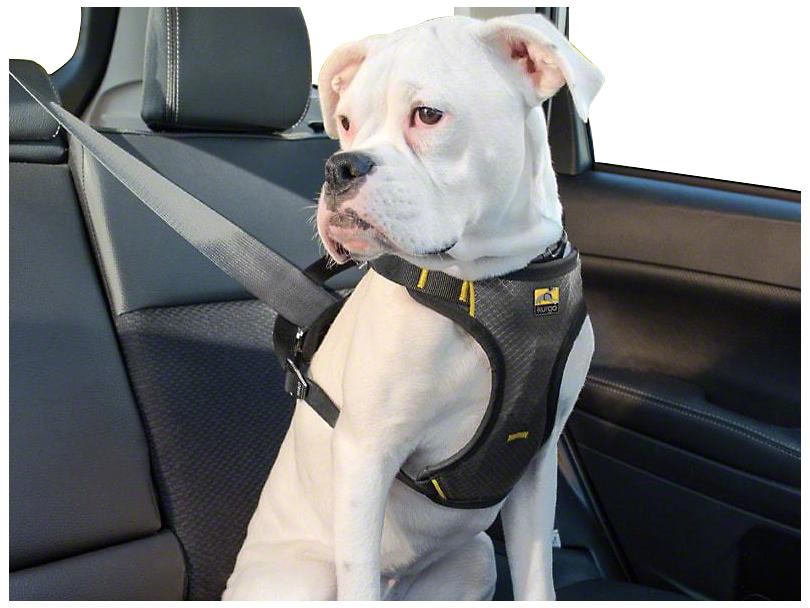 Impact Dog Car Harness - Black/Charcoal