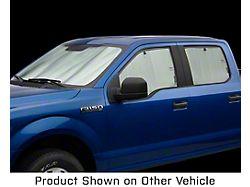 Weathertech TechShade Full Vehicle Kit (19-21 RAM 1500 Quad Cab)