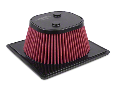 Airaid Direct Fit Replacement Air Filter - SynthaMax Dry Filter (09-14 F-150)