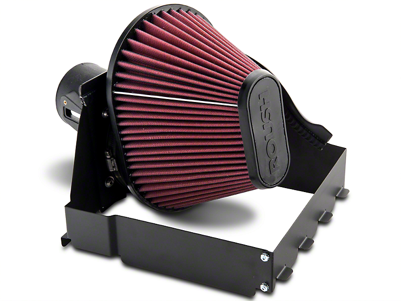 Roush Cold Air Intake (2009 4.6L F-150)
