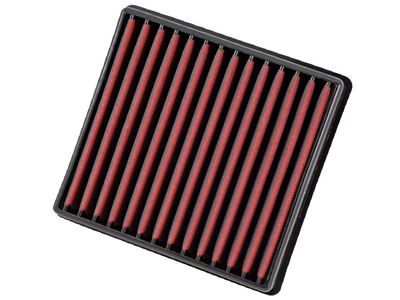 AEM DryFlow Replacement Air Filter (09-18 F-150)