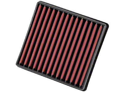 AEM DryFlow Replacement Air Filter (09-19 F-150)