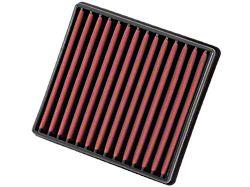 AEM DryFlow Replacement Air Filter (09-22 F-150)