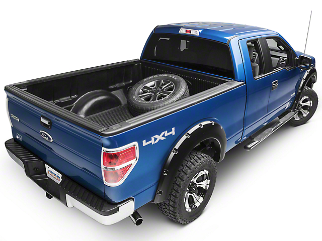LEX Motorsports Tire Carrier (09-14 F-150)