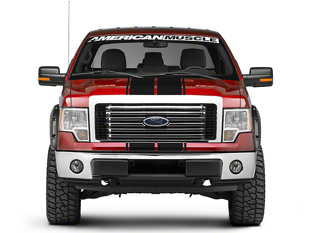 Black Full Length Stripes - 10-1/4 in. (09-14 F-150)