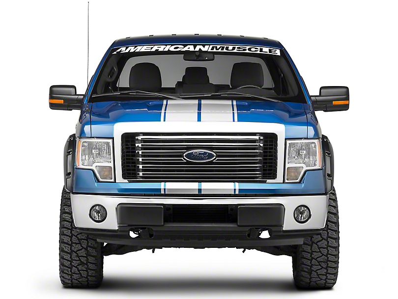 Silver Full Length Stripes - 10-1/4 in. (09-14 F-150)