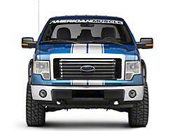 SEC10 Full Length Stripes; Silver; 10-1/4-Inch (09-14 F-150)