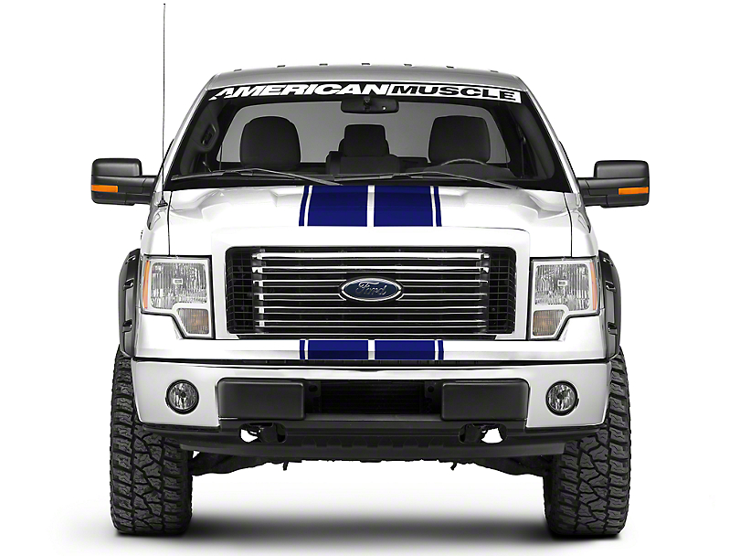 American Muscle Graphics Blue Full Length Sripes - 10-1/4 in. (09-14 All)