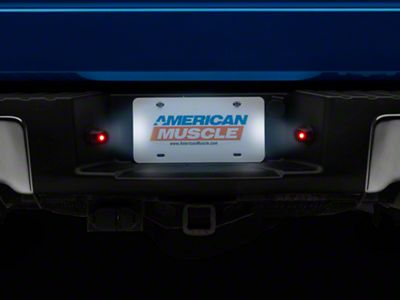 LED License Plate Illumination Kit (97-14 F-150)