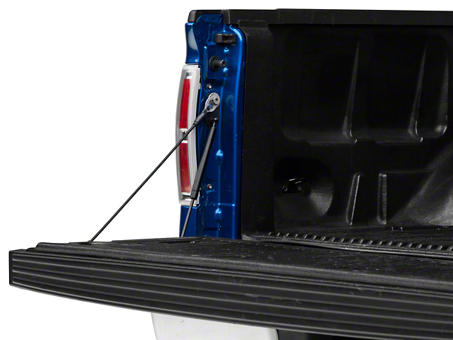 Barricade Tail Gate Assist (09-14 F-150)