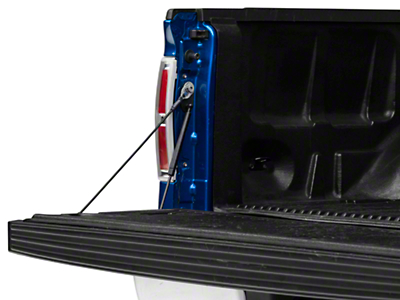 Barricade Tailgate Assist (09-14 F-150)