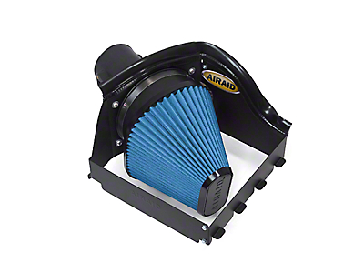 Airaid QuickFit Air Dam w/ SynthaMax Dry Filter (09-10 5.4L F-150, Excluding Raptor)