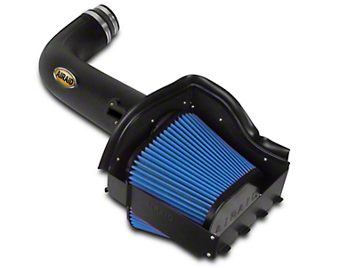 Airaid Cold Air Dam Intake w/ SynthaMax Dry Filter (09-10 5.4L, Excluding Raptor)