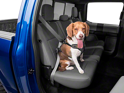 Kurgo Impact Dog Seat Belt Harness - Black - Large 50-80 lbs (97-17 All)