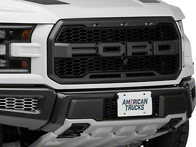 ACC Brushed Front Lower Bumper Lead Grilles (17-18 Raptor)