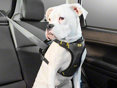 Kurgo Impact Dog Car Harness - Black/Charcoal (97-18 F-150)